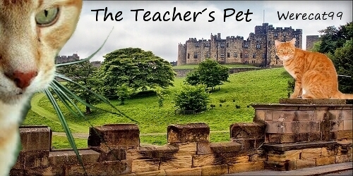 The Teacher's Pet